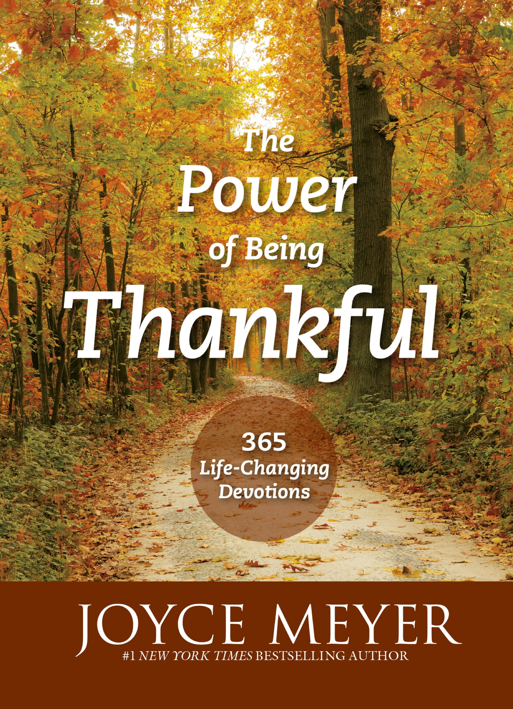 The Power of Being Thankful 365 Life Changing Devotions