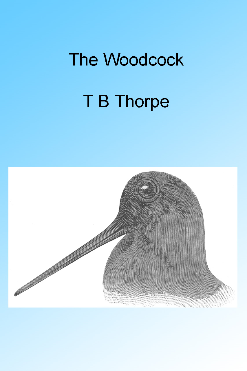 The Woodcock, Illustrated