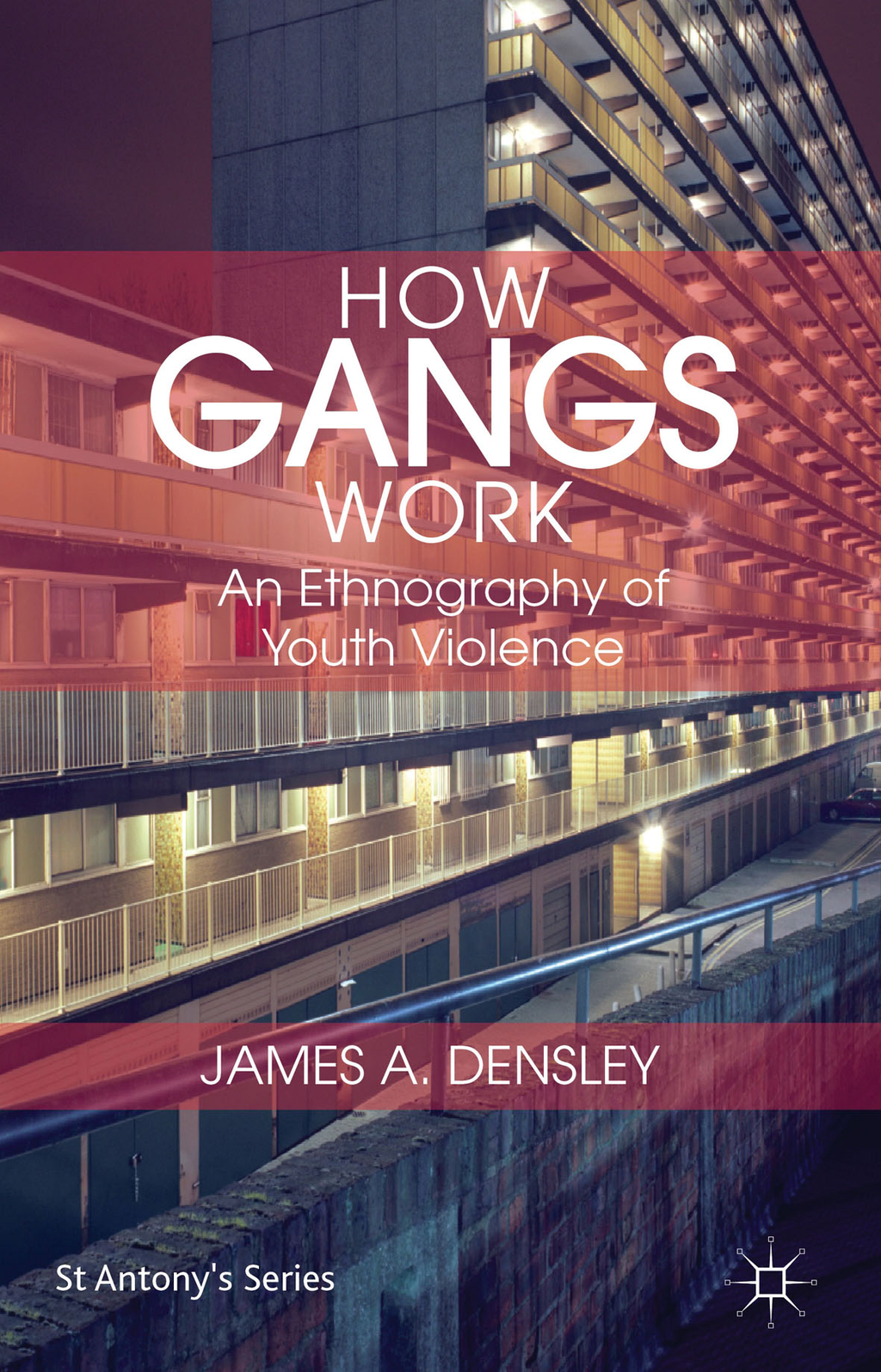 How Gangs Work An Ethnography of Youth Violence