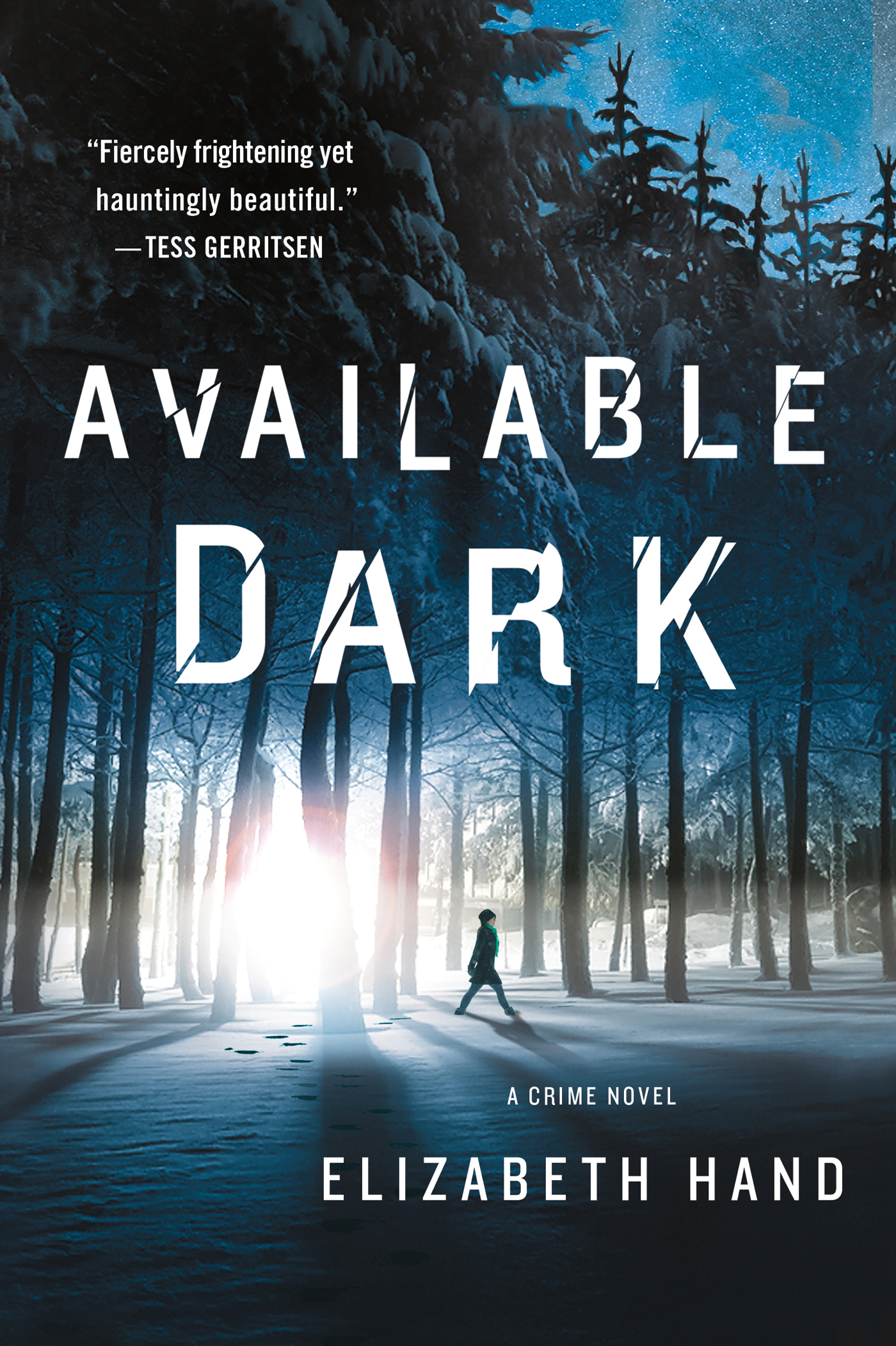 Available Dark By: Elizabeth Hand