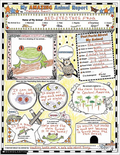 my book report poster paper
