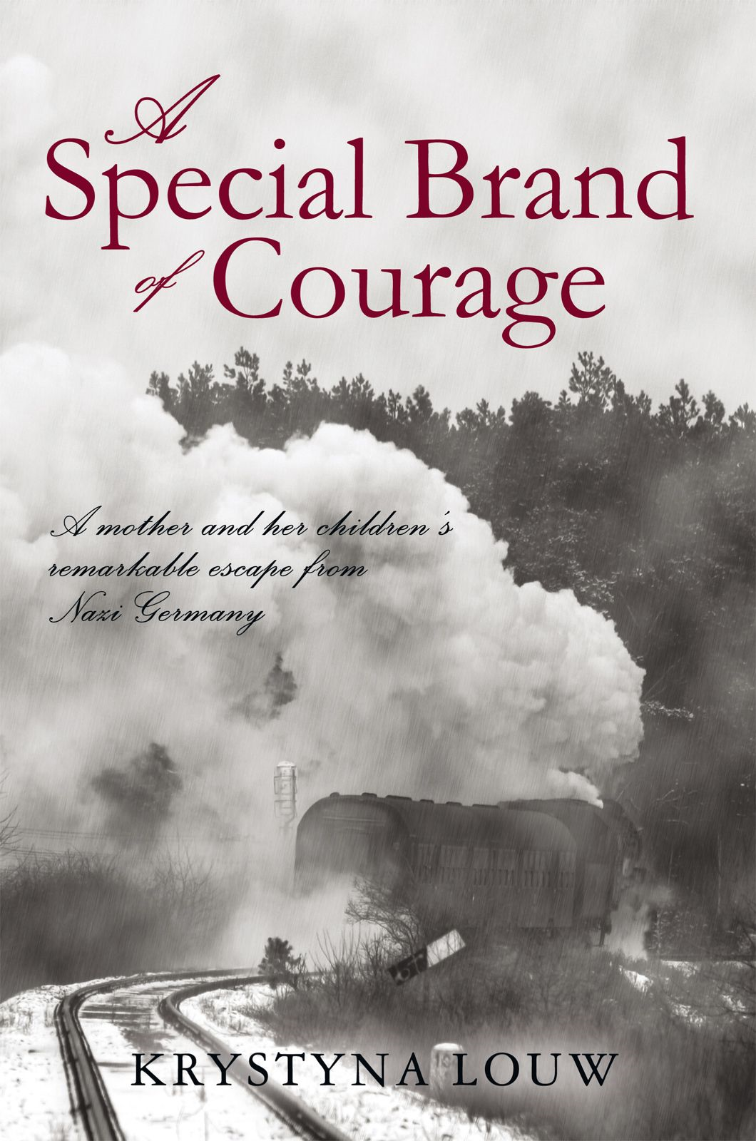 A Special Brand Of Courage By: Krystyna Louw
