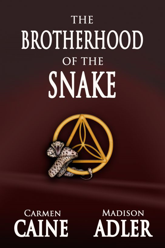 The Brotherhood of the Snake ( The Glass Wall Series - A YA Romantic Urban Fantasy ) By: Carmen Caine