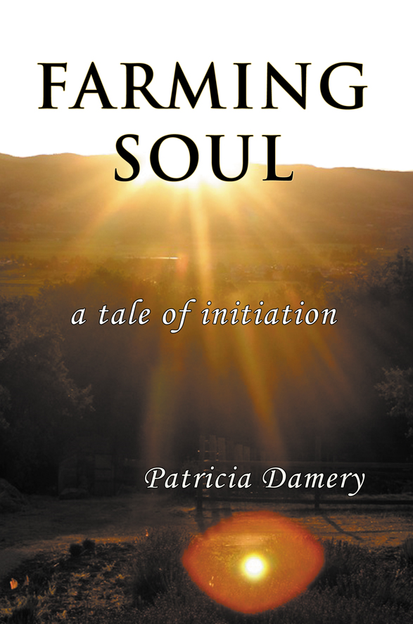Farming Soul By: Patricia Damery