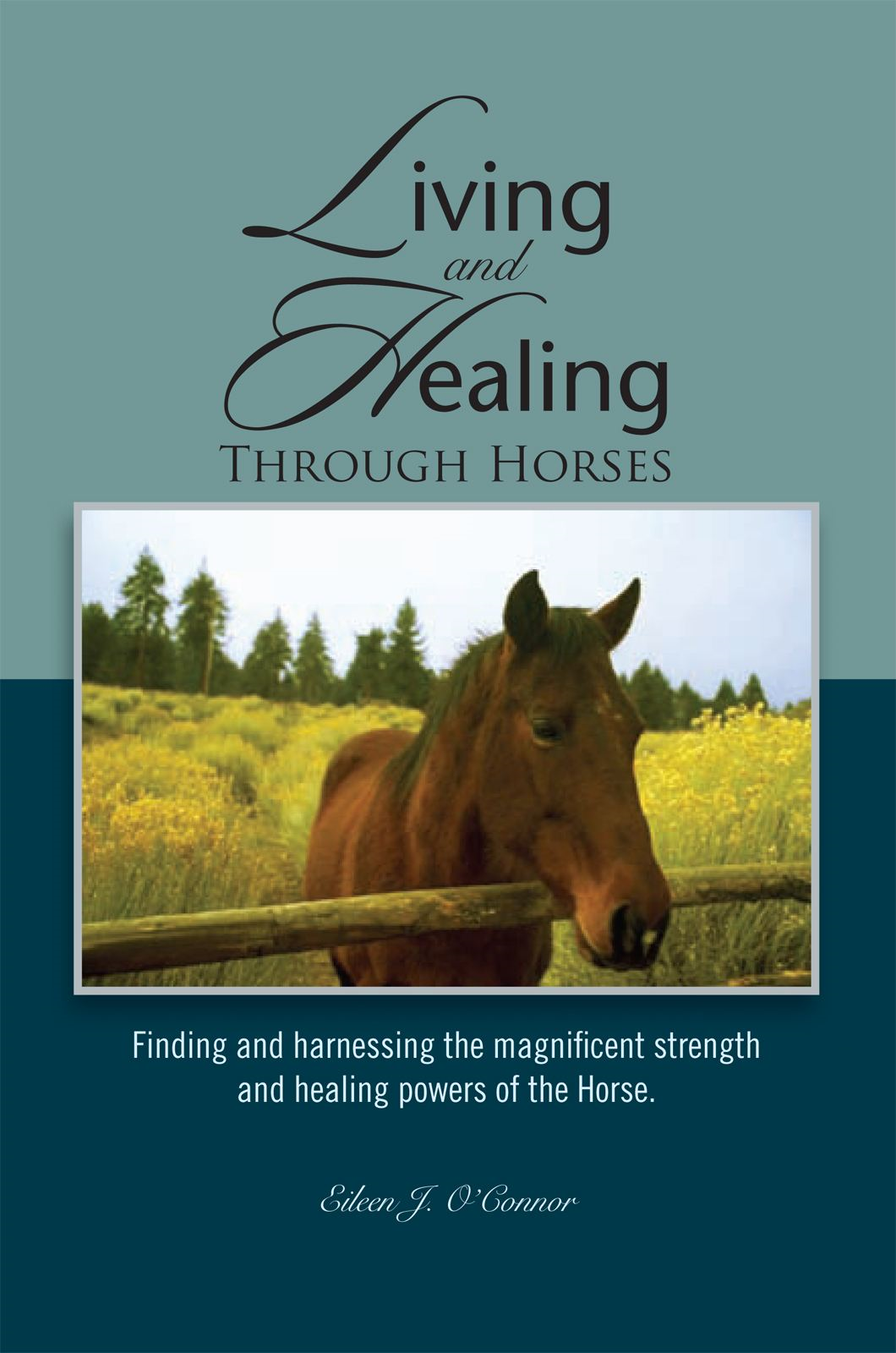 Living And Healing Through Horses