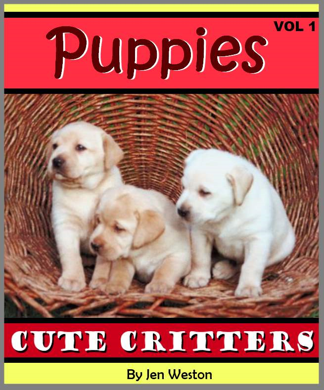 Puppies - Volume 1 By: Jen Weston