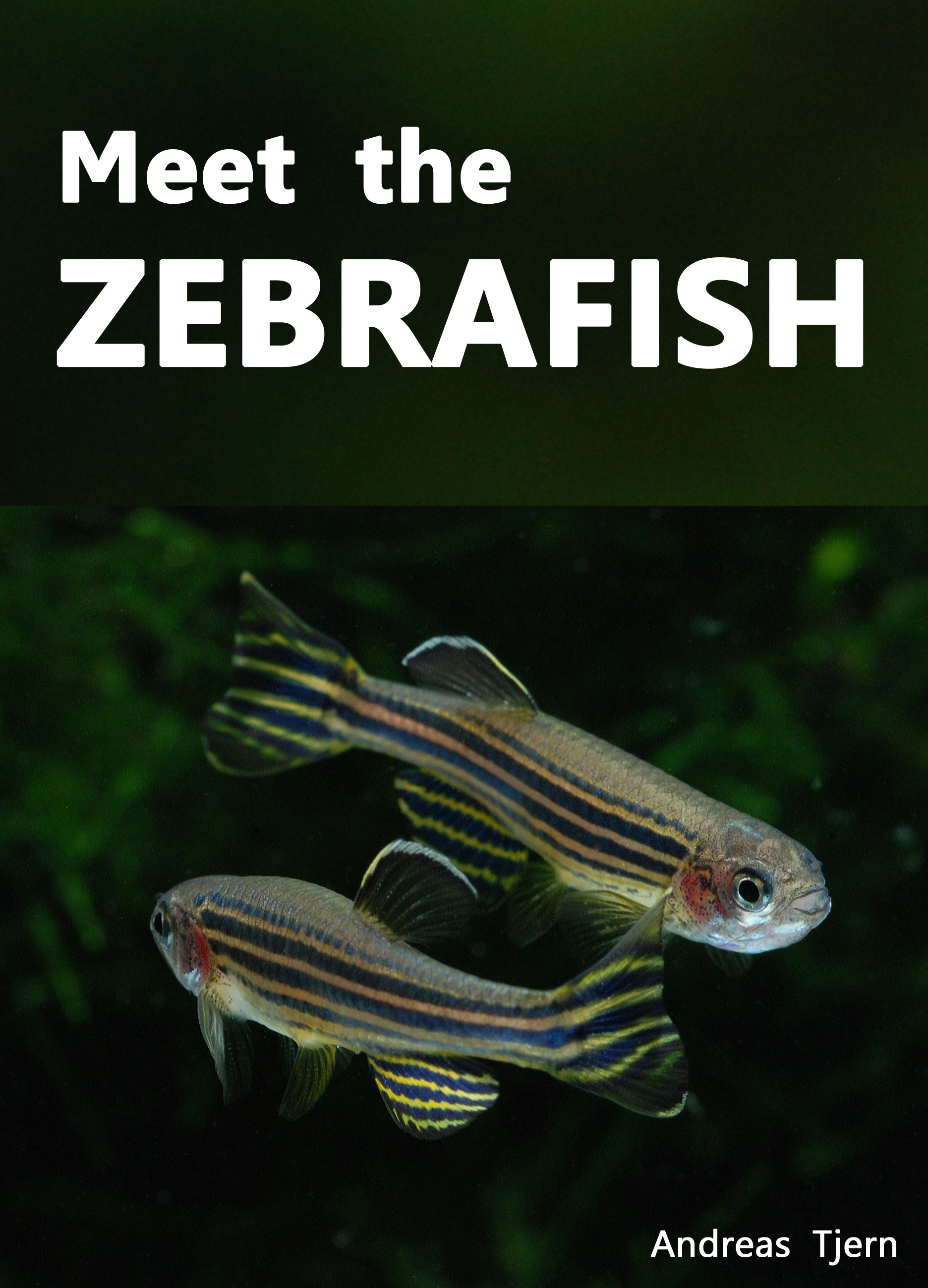 Meet the Zebrafish. A Short Guide to Keeping, Breeding and Understanding the Zebrafish (Danio rerio) in Your Home Aquarium