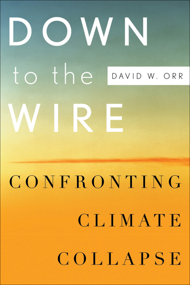 Down to the Wire:Confronting Climate Collapse
