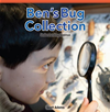 Ben's Bug Collection: Understanding Addition