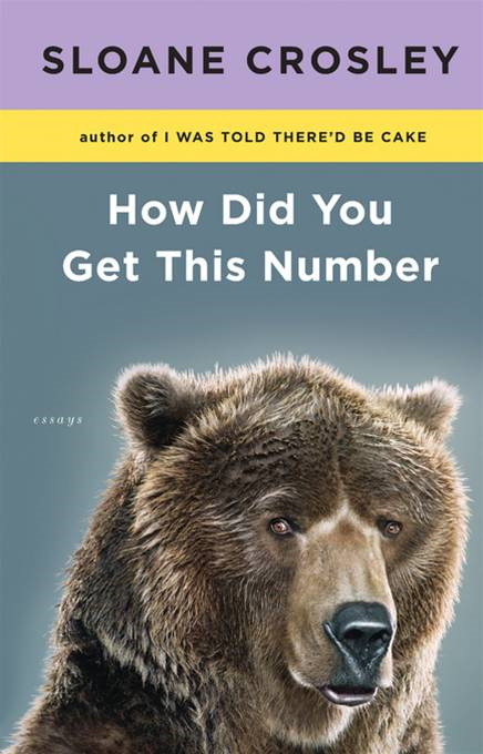 How Did You Get This Number By: Sloane Crosley