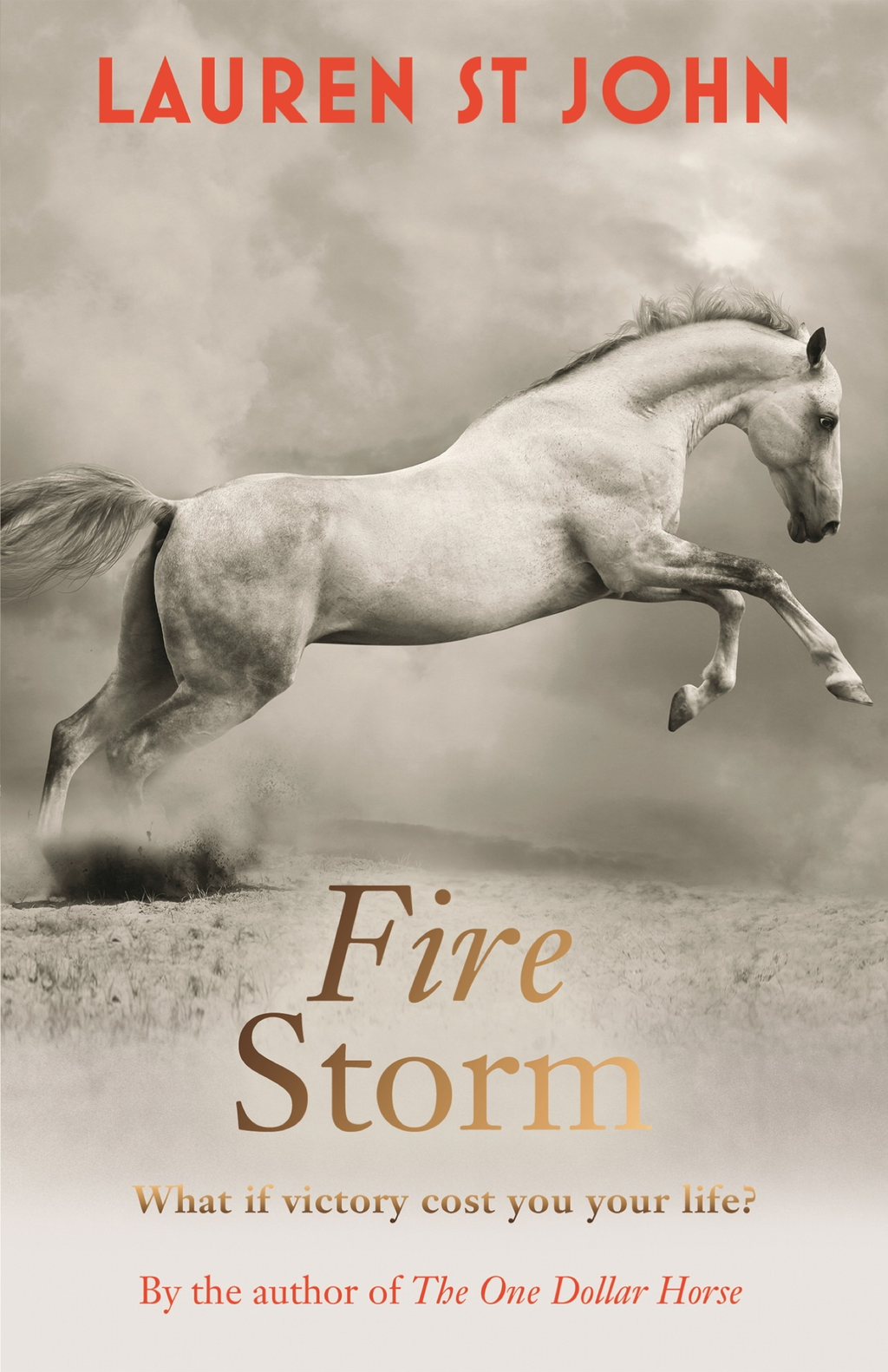 Fire Storm (One Dollar Horse book 3)
