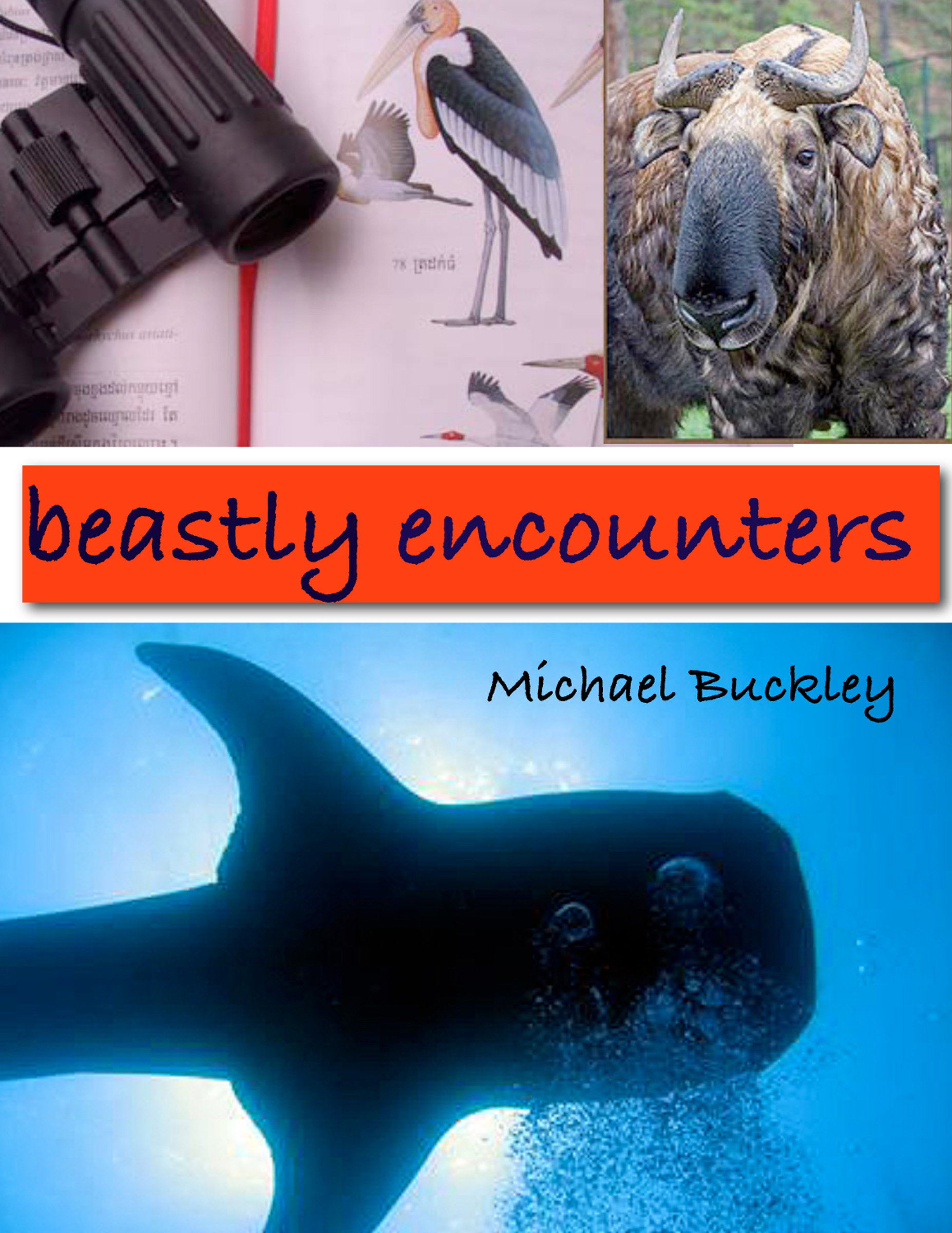 Beastly Encounters