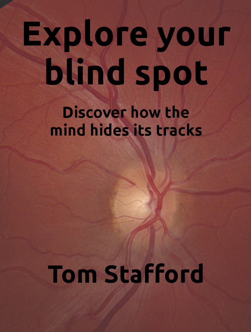 Explore your blind spot