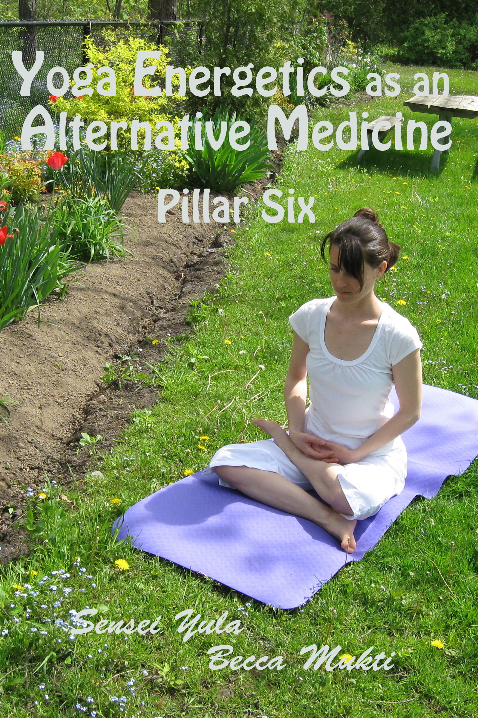 Yoga Energetics as an Alternative Medicine: Pillar Six
