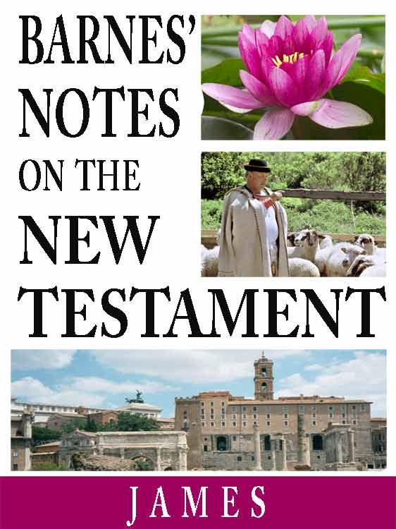 Barnes' Notes on the New Testament-Book of James By: Albert Barnes
