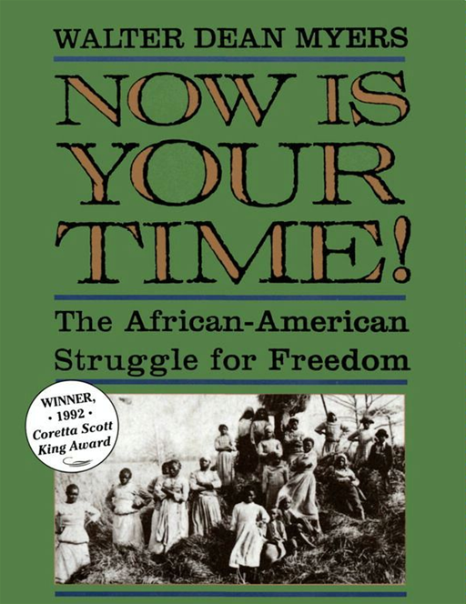 Now Is Your Time! By: Walter Dean Myers