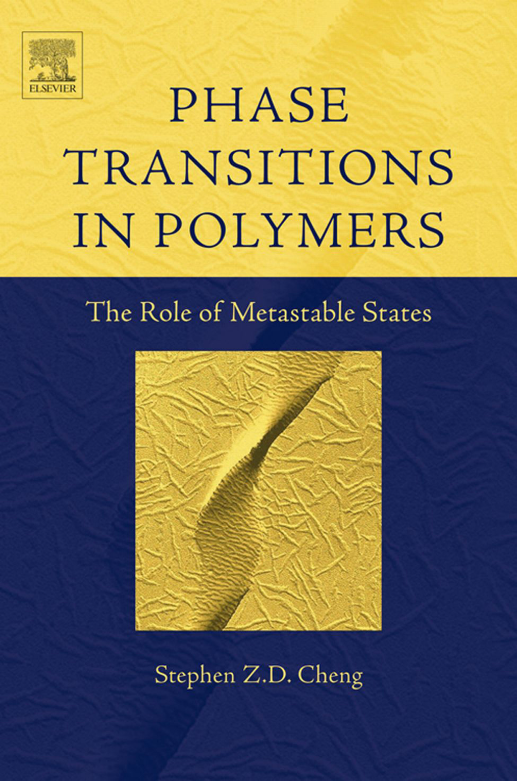 Phase Transitions in Polymers: The Role of Metastable States The Role of Metastable States