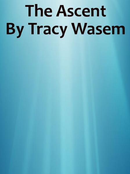 The Ascent By: Tracy Wasem