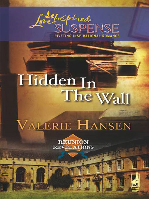 Hidden in the Wall By: Valerie Hansen