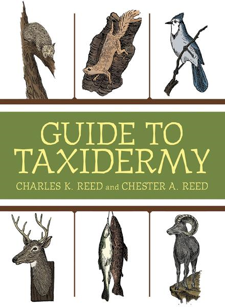 Guide to Taxidermy By: Charles K. Reed, Chester Albert Reed