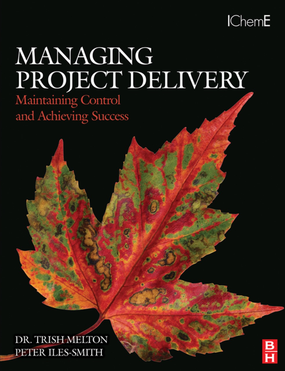 Managing Project Delivery: Maintaining Control and Achieving Success Maintaining Control and Achieving Success