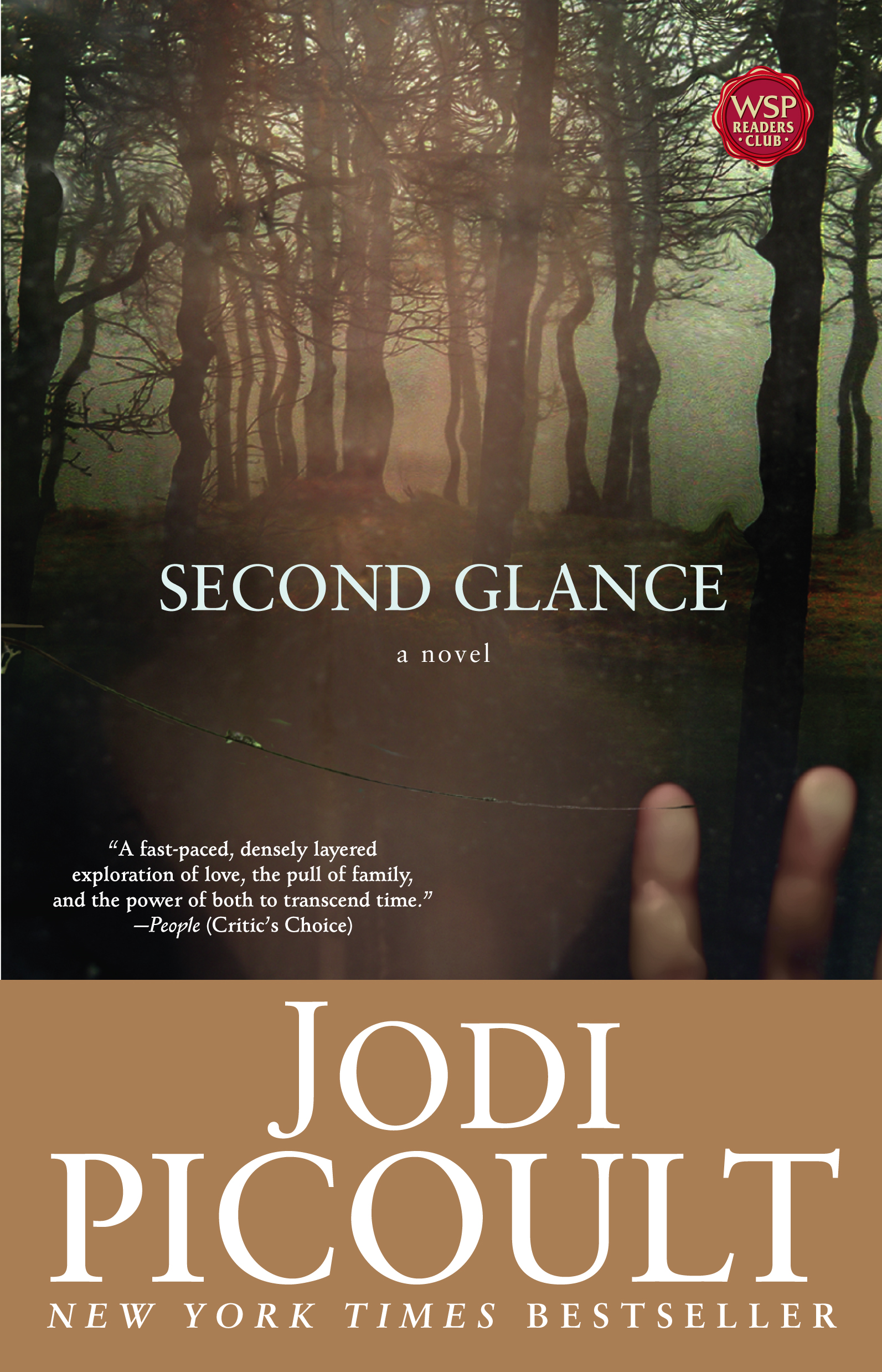 Second Glance By: Jodi Picoult
