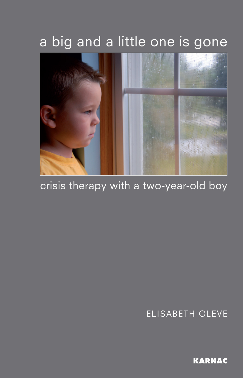 A Big and a Little One is Gone: Crisis Therapy with a Two-year-old Boy