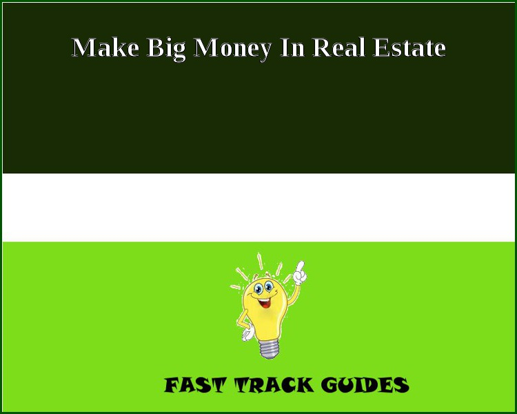 Make Big Money In Real Estate