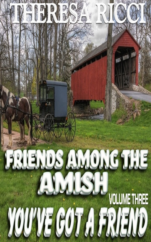 Friends Among The Amish - Volume 3 - You've Got A Friend