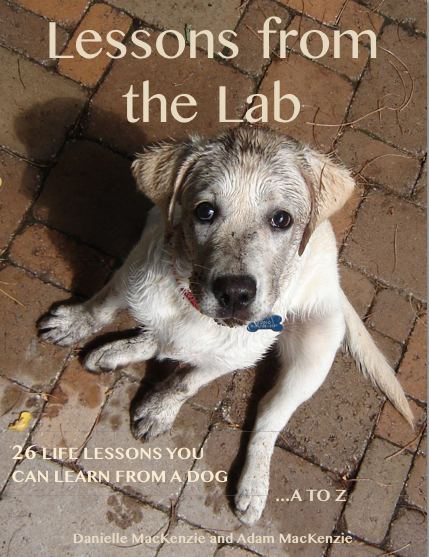 Lessons from the Lab: 26 Life Lessons You Can Learn from a Dog...A to Z By: Adam MacKenzie,Danielle MacKenzie