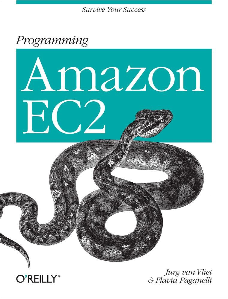 Programming Amazon EC2 By: Flavia Paganelli,Jurg van Vliet