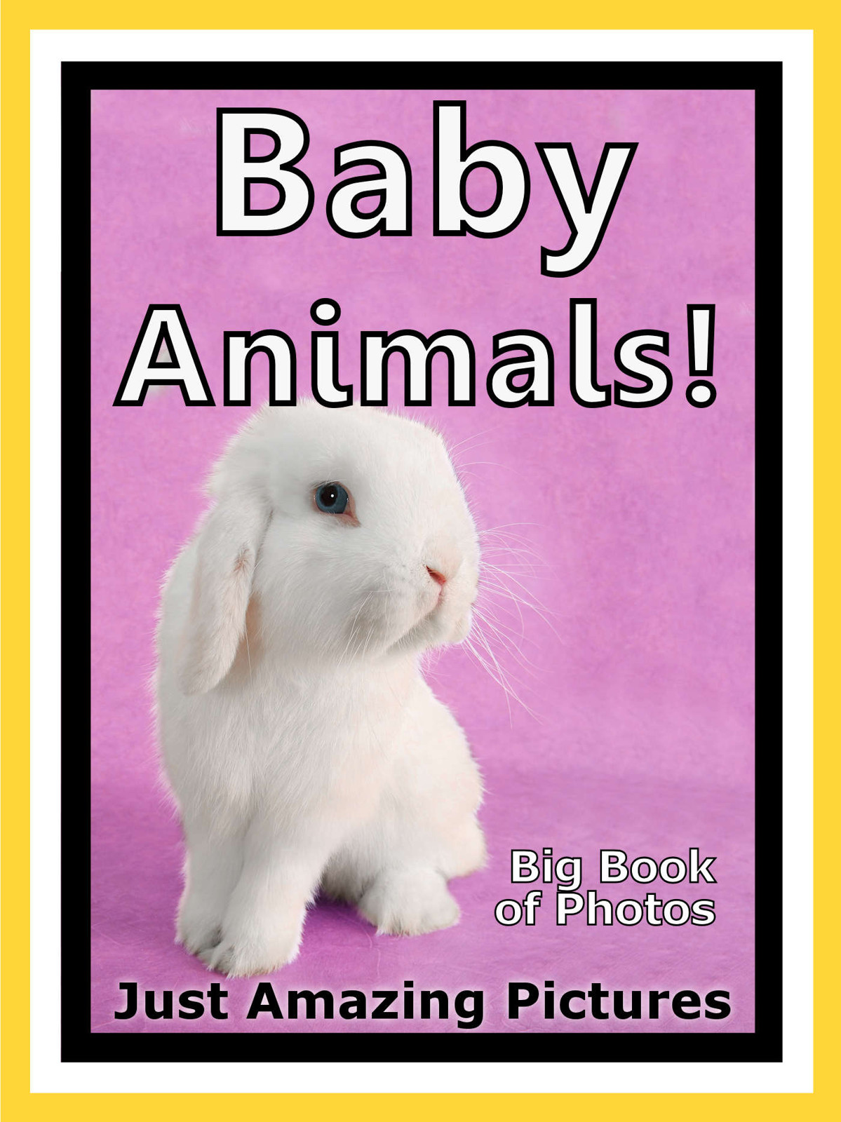 Just Baby Animal Photos! Big Book of Photographs & Pictures of Baby Animals, Vol. 5