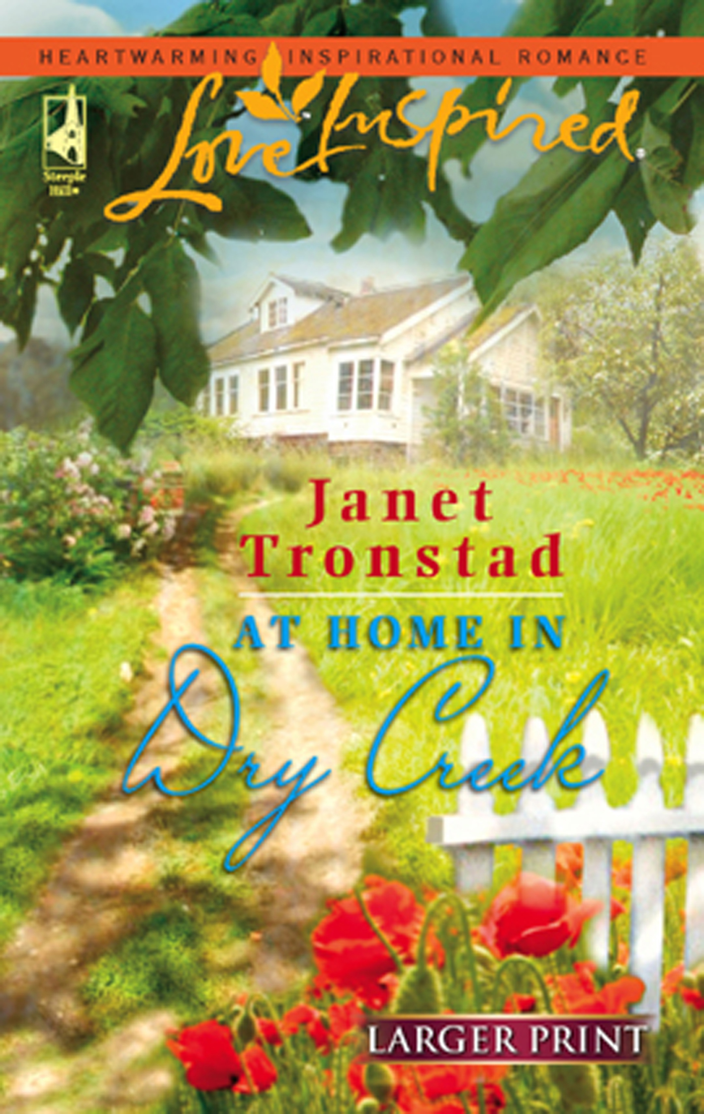 At Home in Dry Creek (Mills & Boon Love Inspired)