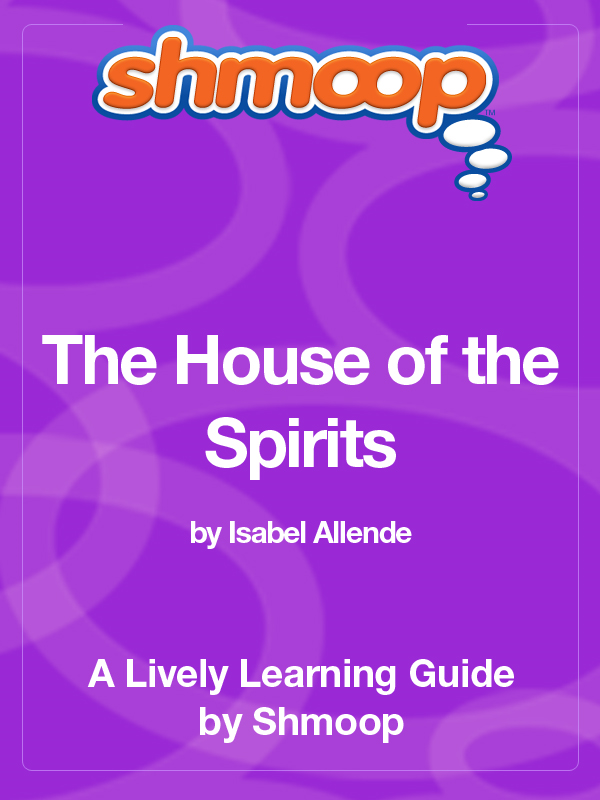 a literary analysis of the house of the spirits