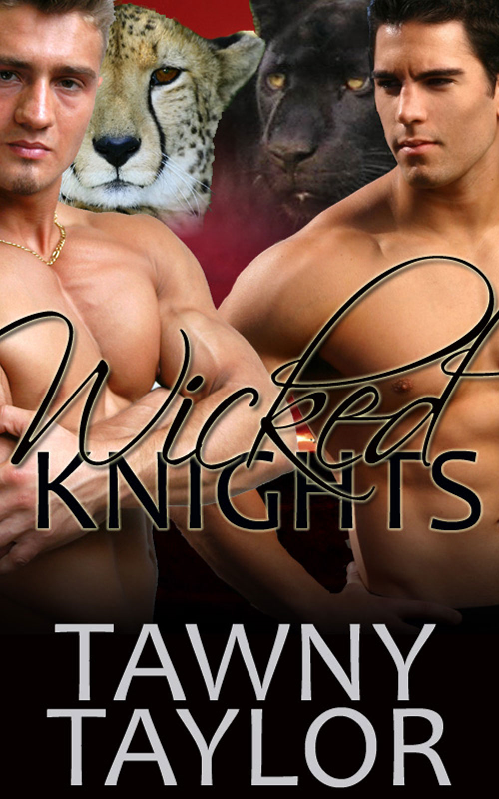 Fifty Shades of Romance: Wicked Knights