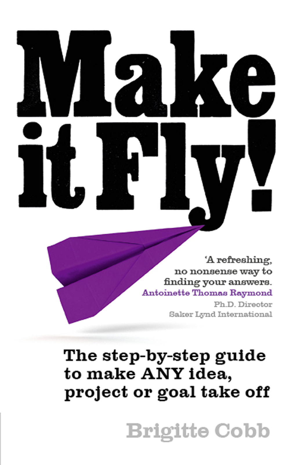Make it Fly! The step by step guide to make ANY idea,  project or goal take off