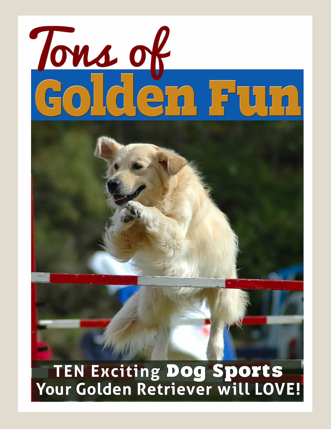 Tons of Golden Fun: Ten Exciting Dog Sports Your Golden Retriever Will Love!