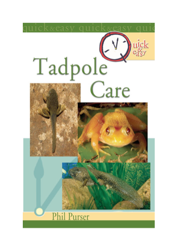 Quick & Easy Tadpole Care