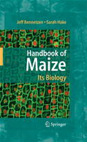 Handbook Of Maize: Its Biology: