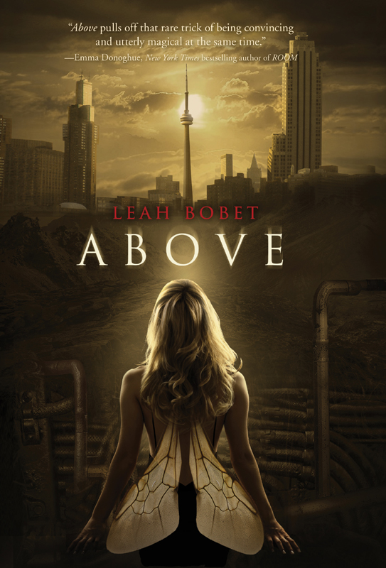 Above By: Leah Bobet