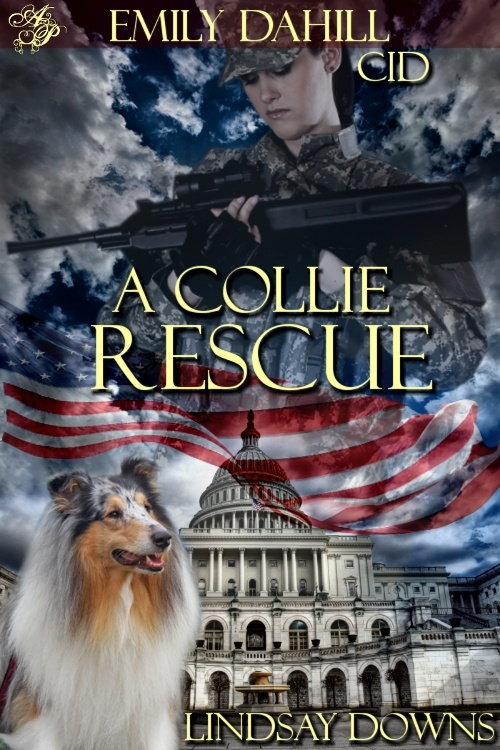A Collie Rescue