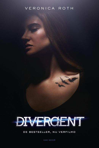 Veronica Roth  Maria Postema - Divergent