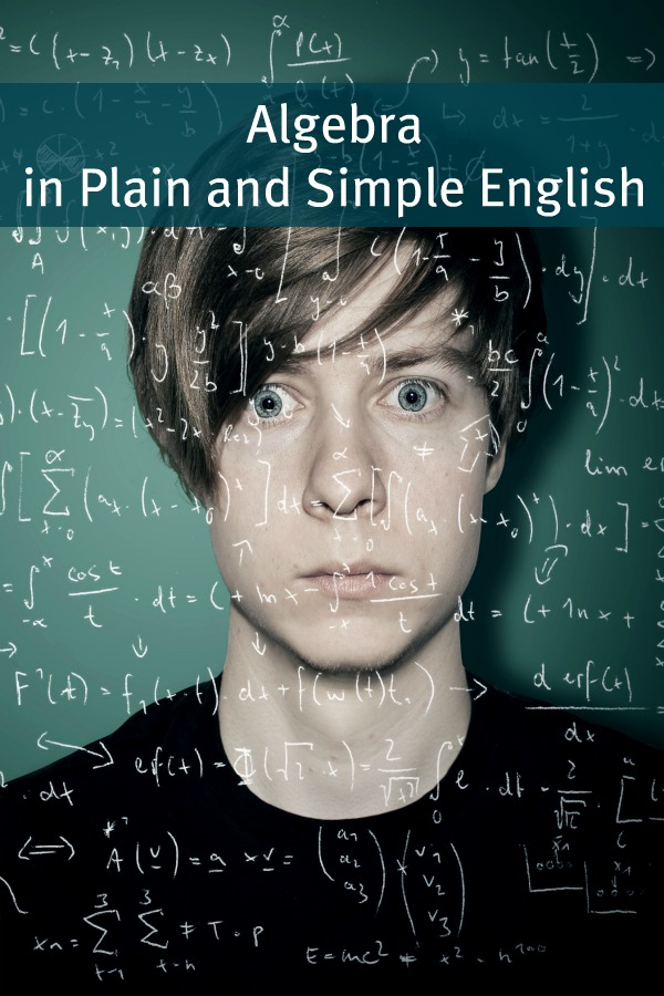 Algebra In Plain and Simple English By: BookCaps