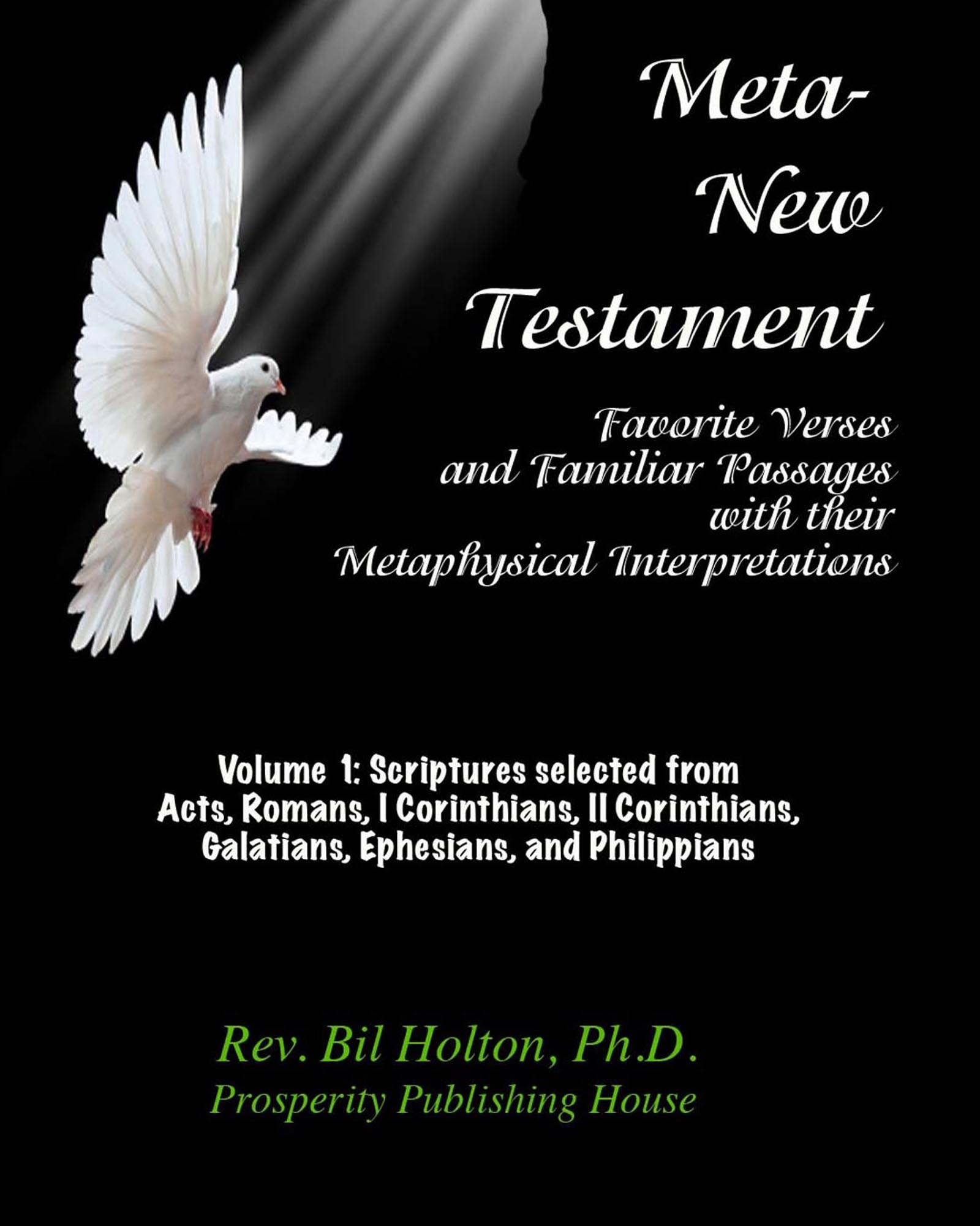 Meta-New Testament: Favorite Verses & Familiar Passages with their Metaphysical Interpretations – Volume 1