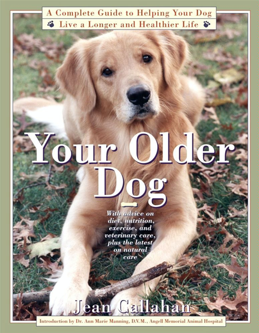 Your Older Dog