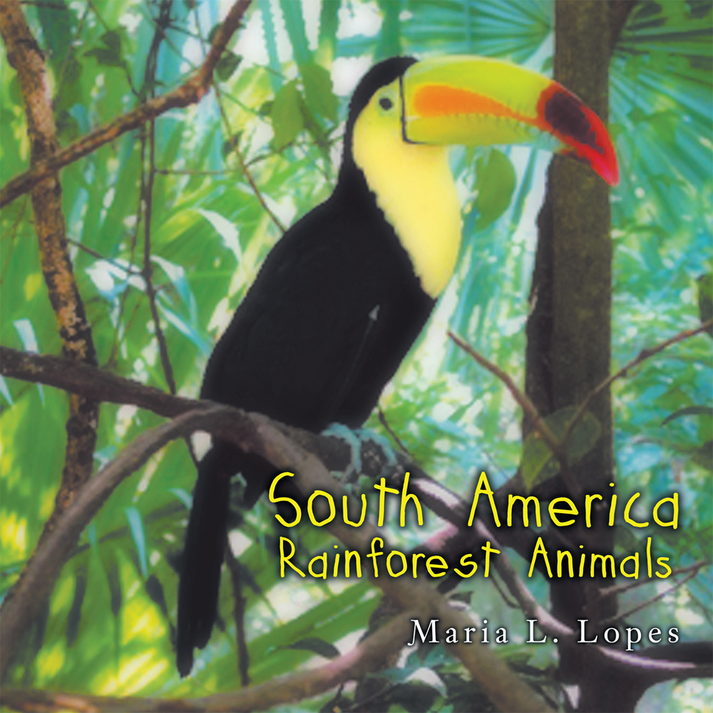 South America Rainforest Animals