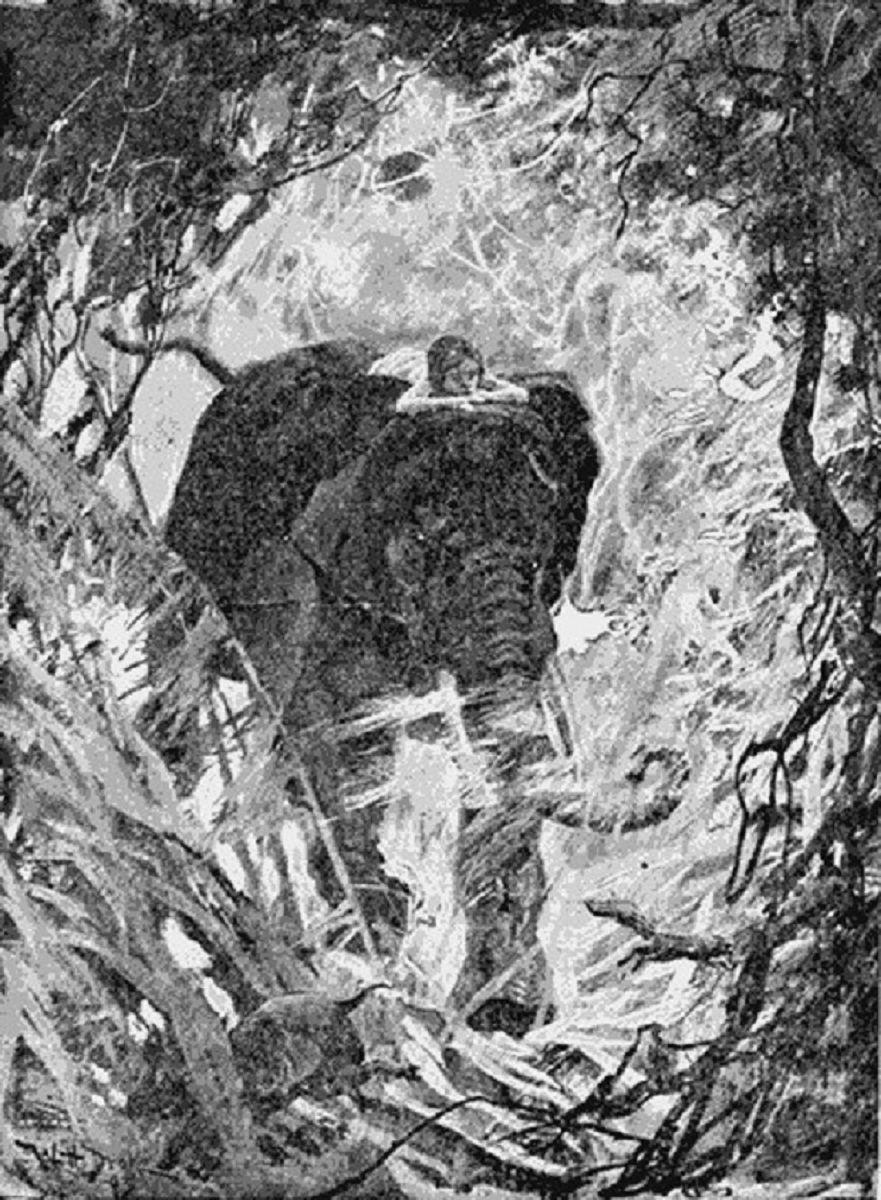 The Jungle Book, Illustrated By: Rudyard Kipling