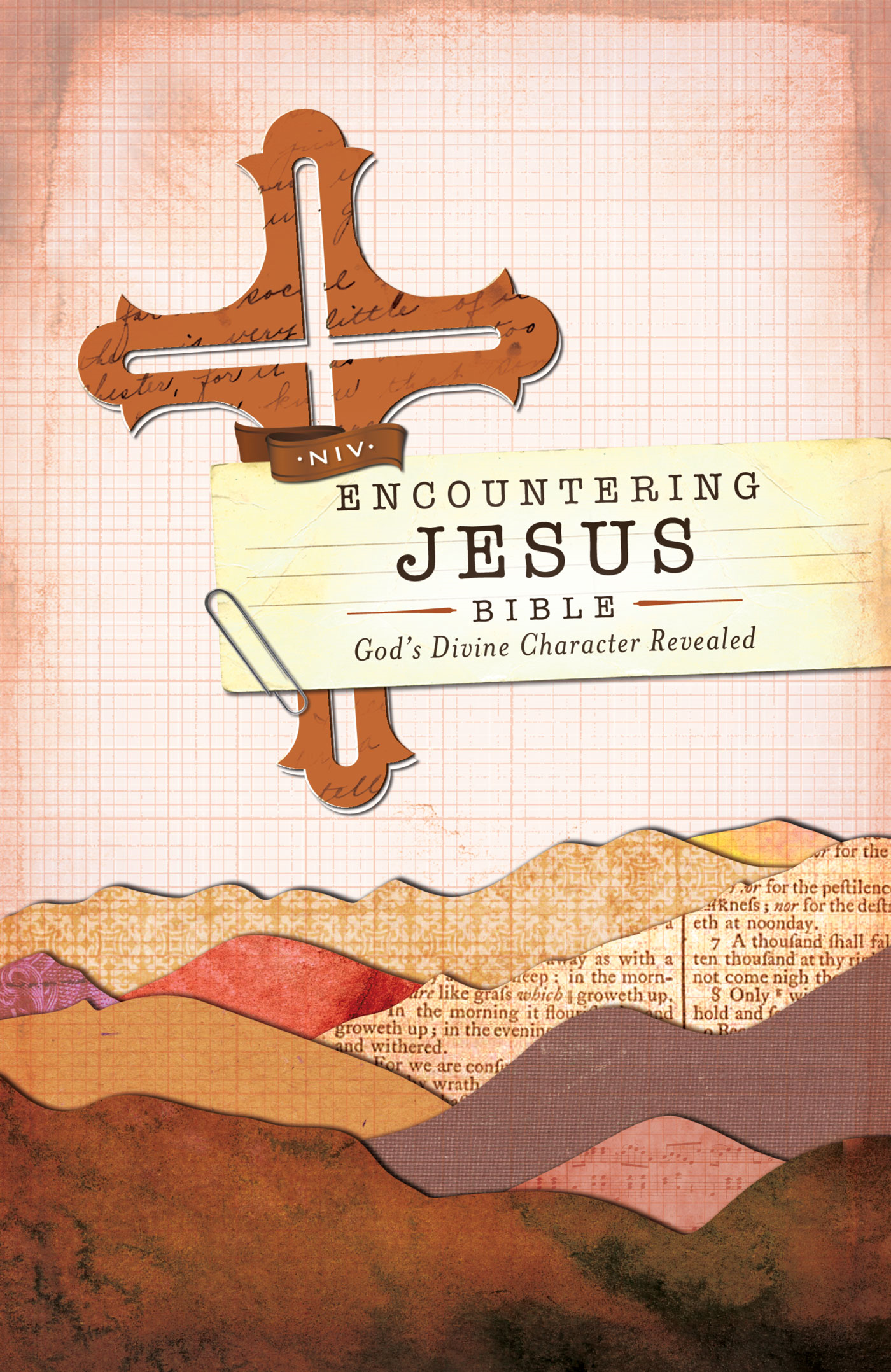NIV Encountering Jesus Bible By: Zondervan