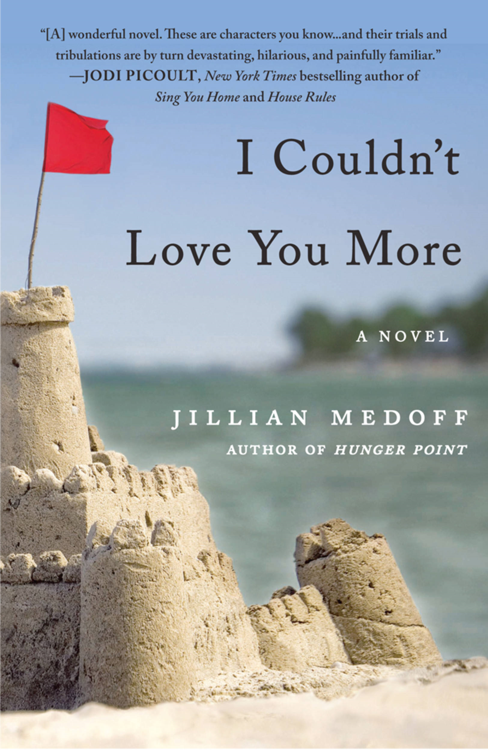 I Couldn't Love You More By: Jillian Medoff
