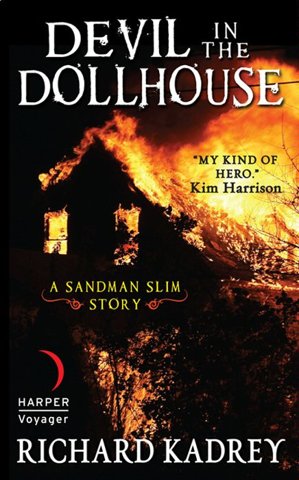 Devil in the Dollhouse By: Richard Kadrey